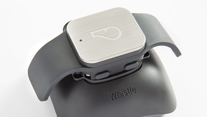 Don't forget the dog. After a successful crowdfund, Whistle GPS is recently on the market to track your pet's location and health.