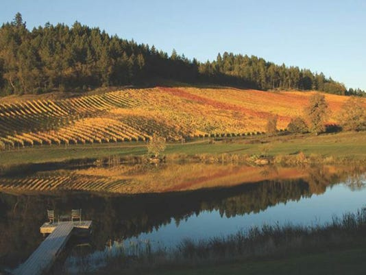635902414063264600-Reustle-vineyard.jpg