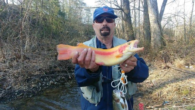 Fish Bob Ski caught in Pennsylvania.