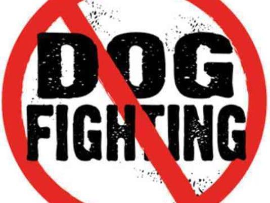 Dog fighting.jpg