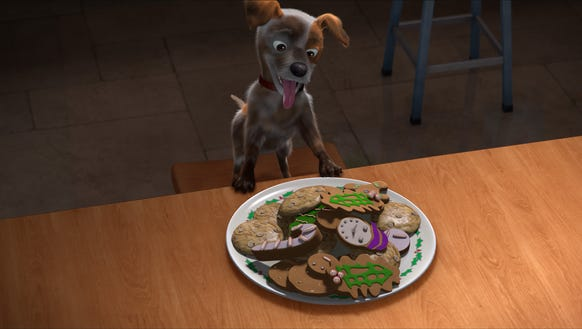 All Jack the dog wants for Christmas is a plate of