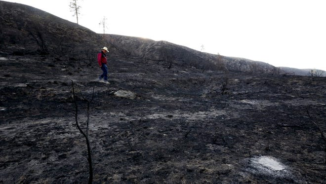 This Sept. 2, 2015 photo shows Rod Haeberle walking near what used to be his property. Haeberle lost 40 miles of fence to the Okanogan wildfires.