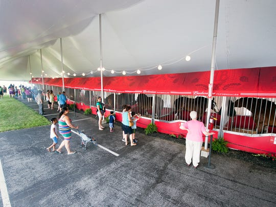The Budweiser Clydesdales temporary barn is under a huge tent in the parking lot of at Brewery Products in Springettsbury Township.