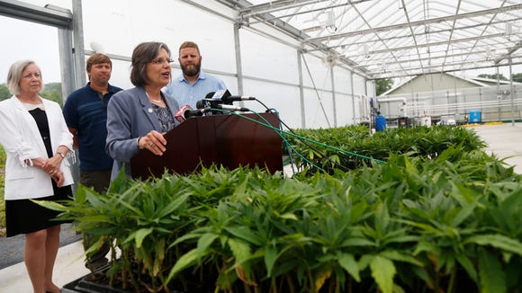 New York State Assemblywoman Donna Lupardo, D-Endwell, speaks about the new industrial hemp farm at Nanticoke Gardens in Endicott on Thursday, July 13, 2017. Lupardo is joined by, from left, Binghamton University's School of Pharmacy Dean Gloria Meredith, and farm co-owners Chip Shafer and Pete Shafer.