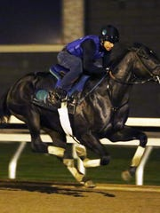Limousine Liberal - Morning Workout - Keeneland Race Course - 102415