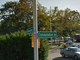 Wandering around Levittown, New York, you'll find many