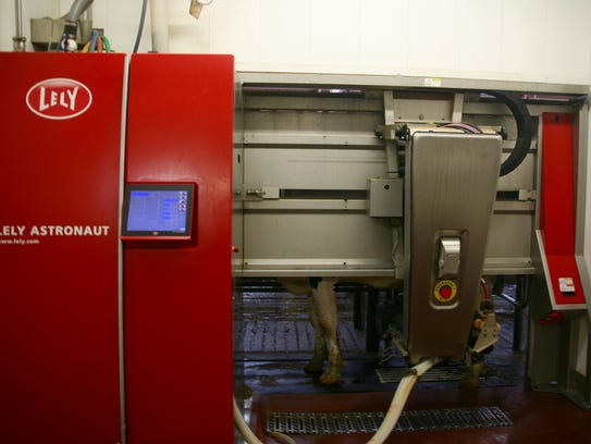 Many robotic milking systems, like this Lely AMS, are