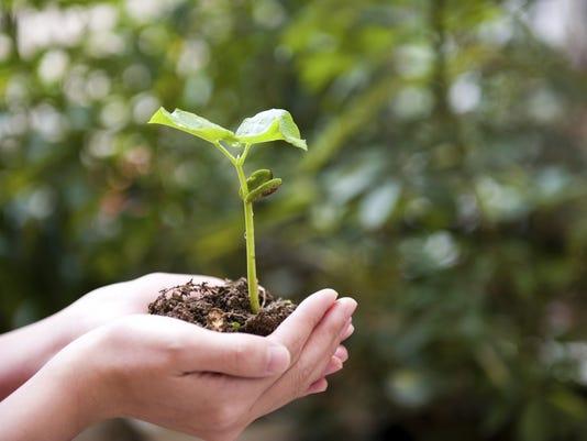Getty_Planting518627013.jpg