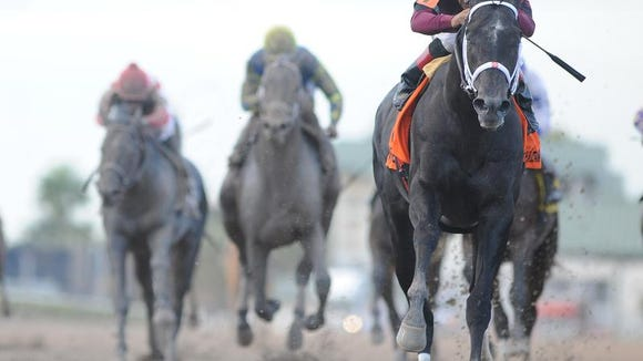 Cairo Prince, a runaway winner in the Holy Bull Stakes last month, is the morning line favorite for the 2014 Kentucky Derby Future Wager's Pool 2.