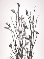Lucrezia Bieler, Hummingbirds, 2017, cut paper on matboard