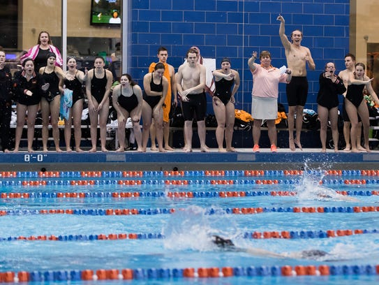 York Suburban swimmers cheer on their teammates during