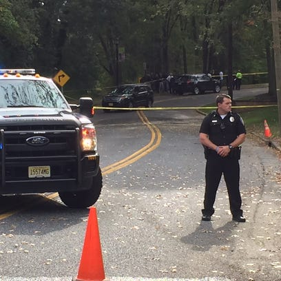 A wooded area of Haddon Township became a massive crime
