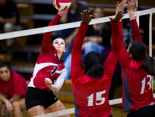 Palmetto's Gracie Williams spikes the ball during the