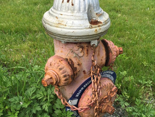 Spring Valley fire hydrant