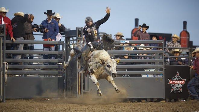 Bull riding in Salinas