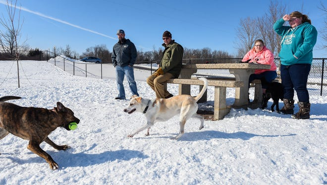 Aaron Athmann, Joe Kresky, Monica Rodel and her sister Makayla watch the dogs play Friday, March 9, at St. Joseph Millstream Dog Park.