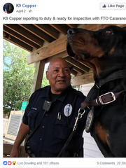 Learn more about the Cocoa police coonhound on Facebook.