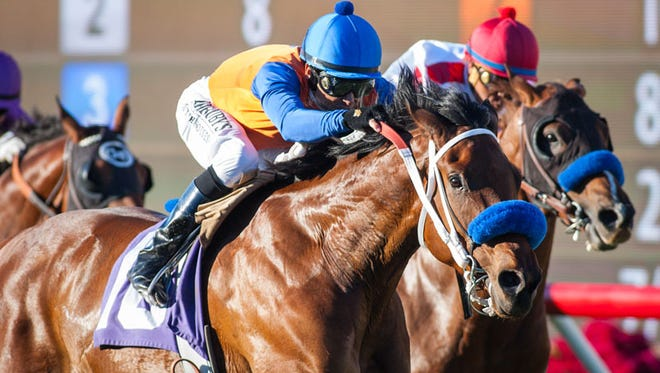 Dressed in Hermes won a stakes last time out at Del Mar.