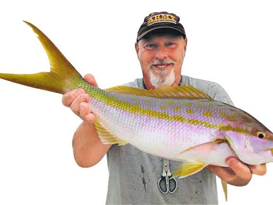Capt. Roy Bennett's dandy yellowtail snapper -- called flags when their tails grow outsize like this -- was one of seven caught with Tom Fowler and friends in 120 feet of water south of Sanibel.