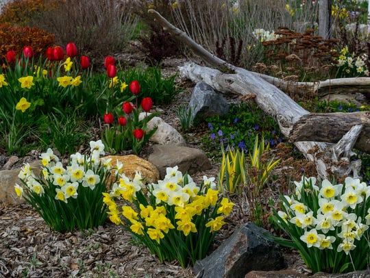 """Spring has Sprung"""