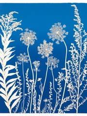 """""""Blue Lace"""" by Anne Wooster"""