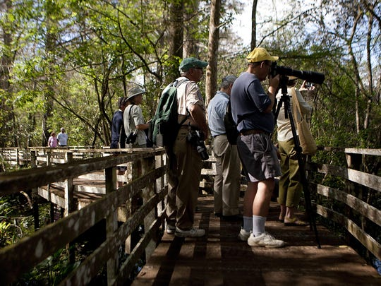 A boardwalk tour will be held Monday at Corkscrew Swamp Sanctuary.