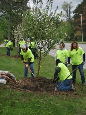 – Volunteers play a huge role in planting trees across Michigan.
