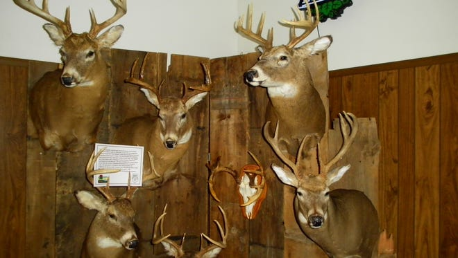 """This photo shows just a portion of the regional """"Wall of Shame"""" our local DNR wardens will bring in for Buck Fever Night.The event is set for Wednesday at City Limits, 3627 County Road CR, 2 miles south of Manitowoc."""