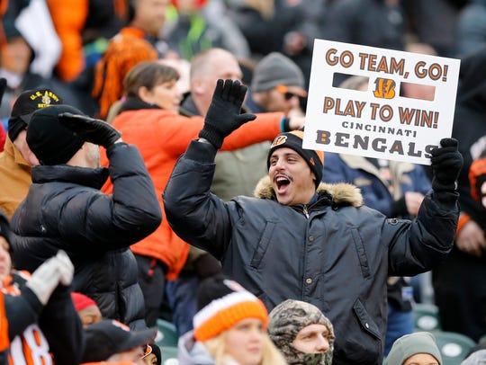Cincinnati Bengals fans celebrate after Cincinnati