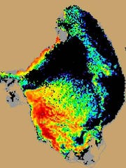 Lake Okeechobee is about 40 percent covered by algae