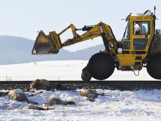 A Montana Rail Link employee snaps a photo Thursday