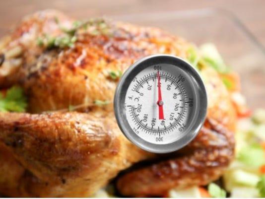 636465339460862048-turkey-thermometer.JPG