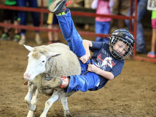 Tucker Goldsberry, 7, of Carlisle hangs on for a ride
