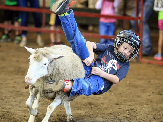 Tucker Goldsberry, 7, of Carlisle hangs on for a ride in the Mutton Bustin' competition at the Iowa State Fair Friday, Aug. 19, 2016.