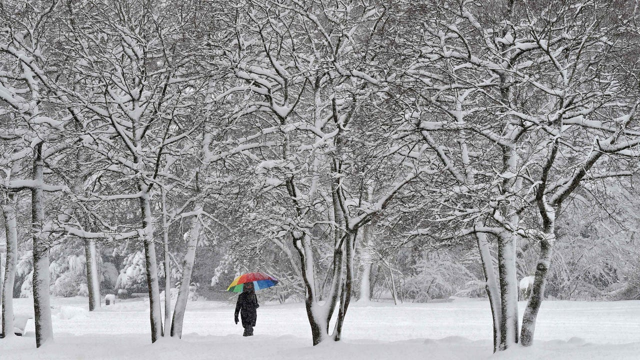 Here is the snowiest city in the world