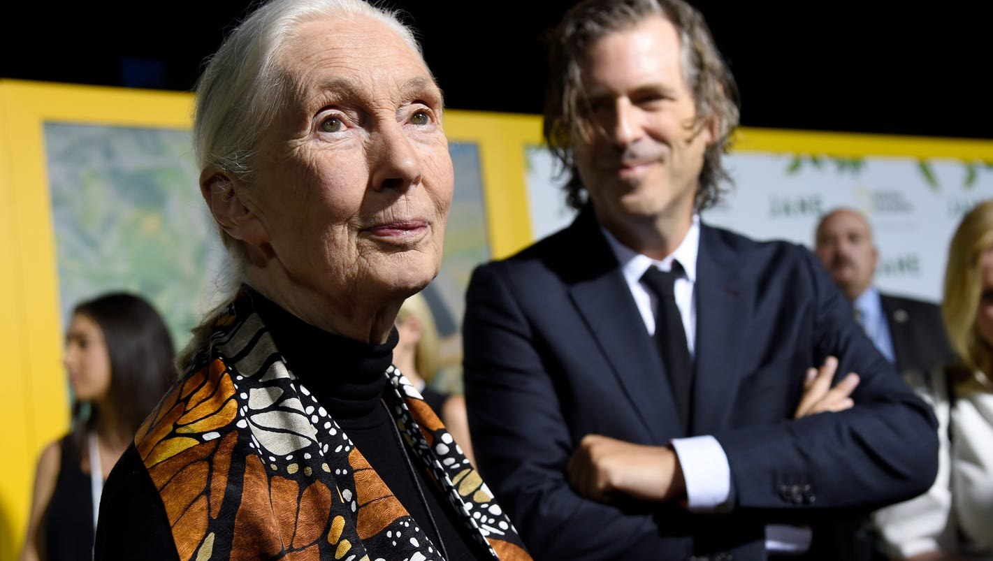 Conservation icon Jane Goodall: Stop destroying the planet or we may destroy ourselves