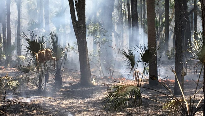Firefighters battle a 1,000+ acre wildfire in Orange County near the Brevard County line.
