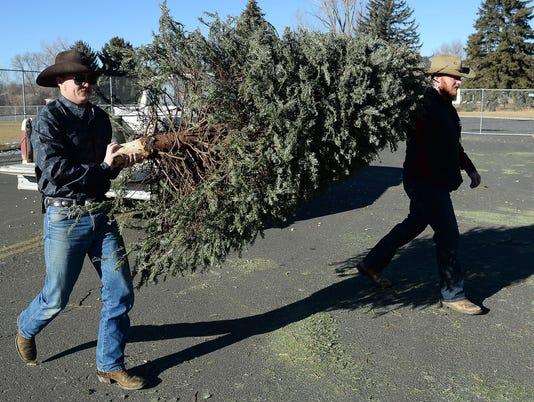 636495551893172047-FTCBrd-12-30-2016-Coloradoan-1-A003-2016-12-29-IMG-FTC121916-tree-recyc-1-1-ELGTL1DE-L947423369-IMG-FTC121916-tree-recyc-1-1-ELGTL1DE.jpg