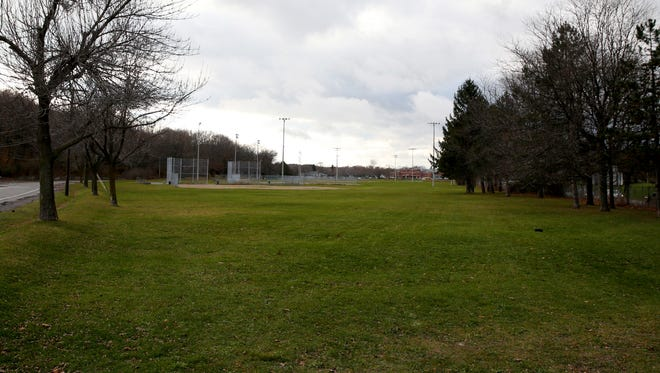 The are at Cobs Hill Park were the city has proposed a dog park.