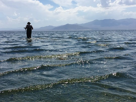 Scientist Tim Bradley takes a water sample while doing research on algae at the Salton Sea. Bradley, with the University of California, Irvine, says toxic dust is a major concern as the lake shrinks.