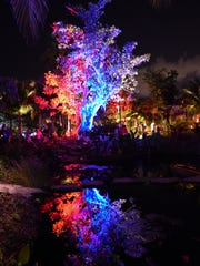 The annual Night Lights in the Garden at Naples Botanical Garden