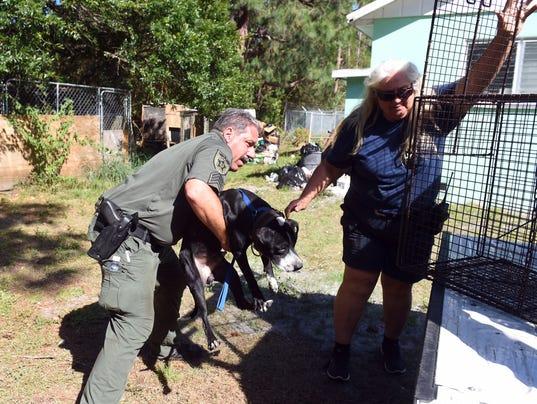 636282207574880995-seized-dogs-1.jpg
