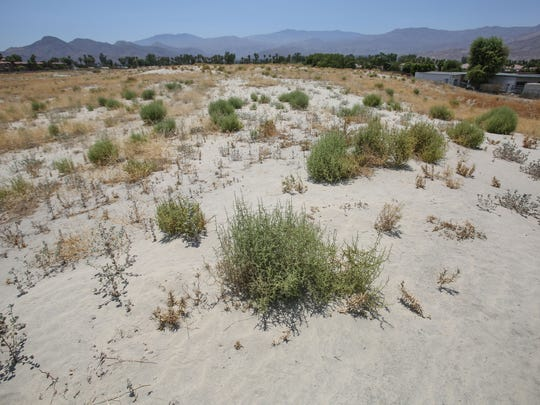 Palm Desert has tabled an apartment project slated for this vacant lot on Hovely Lane amid objections from nearby residents. Photo taken Thursday, June 22, 2017. The lot is sandwiched in between Carter Elementary and the Canterra Apartments.