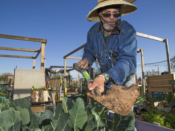James McDonald, 56, of Phoenix, digs up plants in his