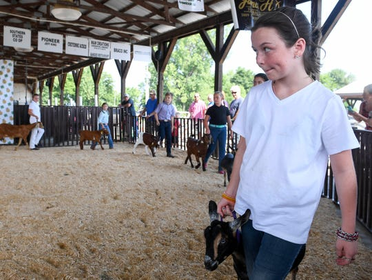 Sierra Johnson, 11 years-old, leads her goat in to