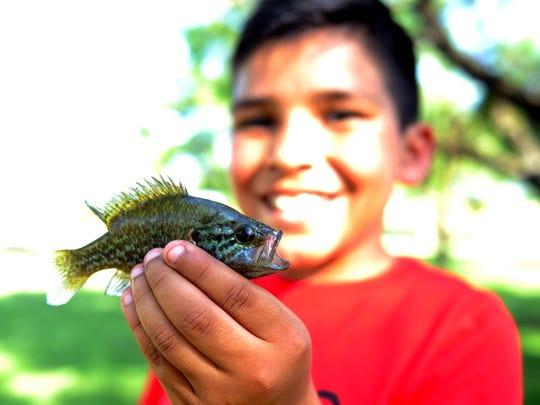 Javier Bernal shows off the fish he caught at After School Fishing hosted by the Texas Parks and Wildlife Department in 2016. An After-School Fishing session starts 4:30 p.m. May 15 at South Weeks Pond.