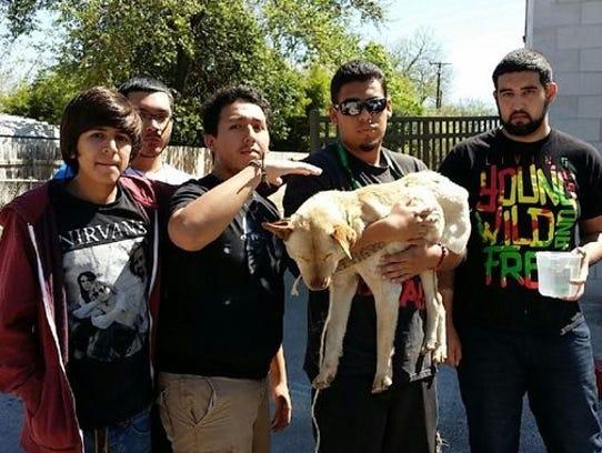 San Antonio Stray Dog Rescue