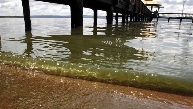 En la investigación, un grupo liderado por científicos de la Universidad Estatal de Oregón logró establecer una conexión entre los niveles de algas tóxicas y los fenómenos climáticos recurrentes como el Niño y la Oscilación del Pacífico.