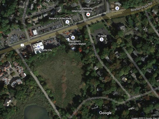 Boxed in the middle of Boston Post Road, Taylors Lane, Shadow Lane and Greenhaven Road is a 7.85-acre property owned by the Village of Mamaroneck that was cleaned and is being suggested for a dog park.