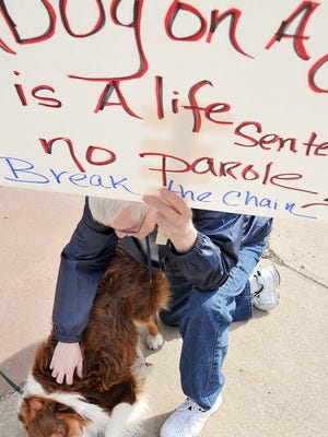 Happy, a 2-year-old male Australian shepherd, gets some love from Gary Hanson, of Mansfield, during an April 20 anti-tethering rally in Mansfield. The city council is set to vote on the issue Tuesday.